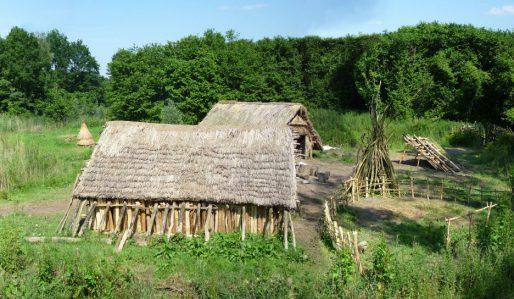 Science Cafe Leiden: Hoe bouw ik een prehistorisch huis? op dinsdag 11 juni 2019 in Scheltema Leiden